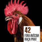 Cartell de la 42a Fira Avicola